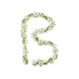 Guirlande de fleurs - blanc