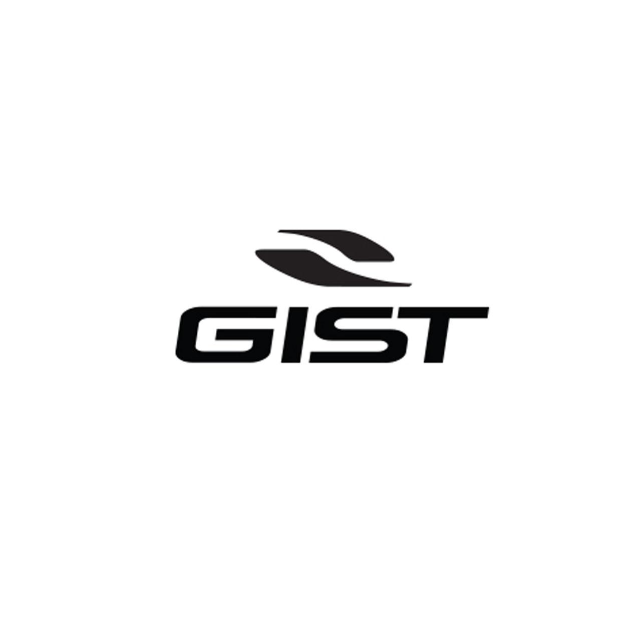 Gist ®